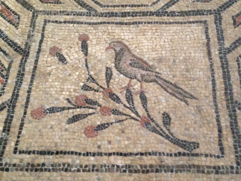 mosaics Aquileia.jpg 34